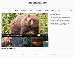 Oasis Web Development